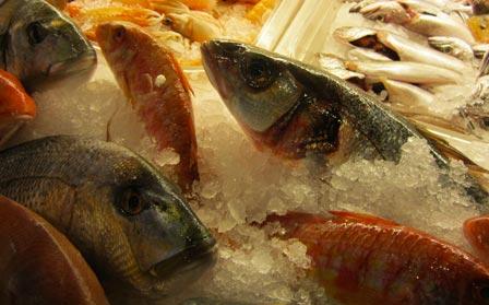 Ristorante Trastevere pesce fresco