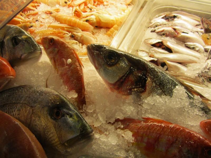 """Il pesce fresco """"Secondo Checco"""""""