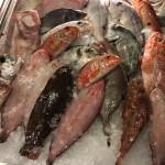 pesce-fresco-2