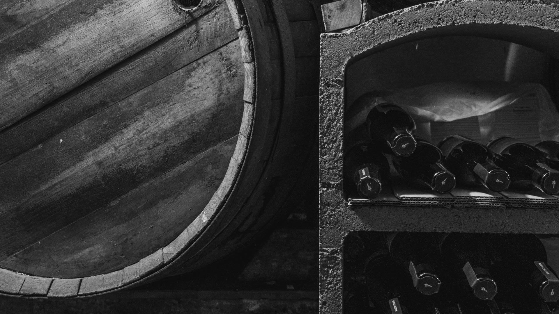 i vini di checco